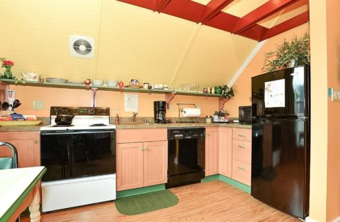 Small kitchenette wth fridge, stove and dishwasher and long green shelf holding dishes